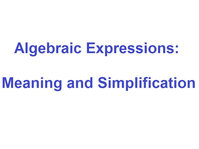 Algebraic Expressions: Meaning and Simplification