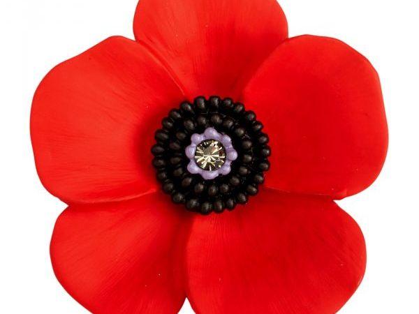 Remembrance Day class mass service