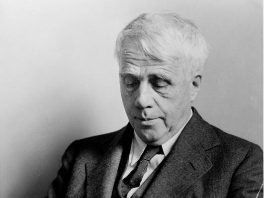 Going For Water by Robert Frost Poetry Analysis