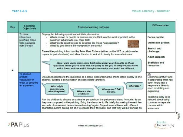 Detailed English Plan year 5/6 mixed age visual literacy