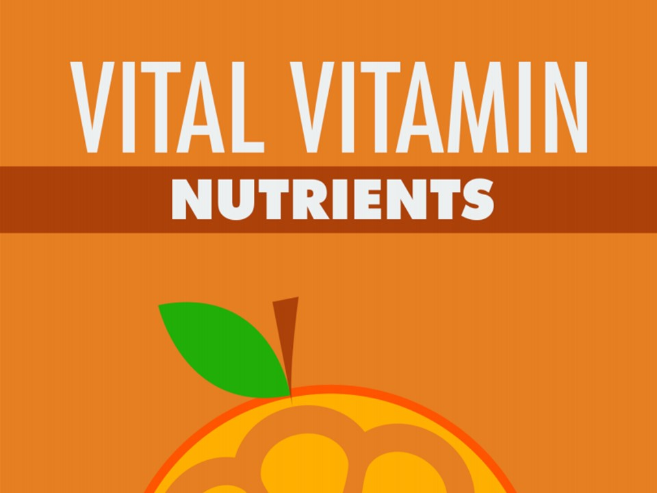 Guide to Vitamins