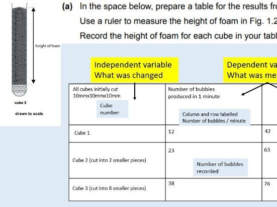 Cambridge IGCSE CIE 0610 Biology  2019 paper 6 mock practice exam, test with integrated mark sch