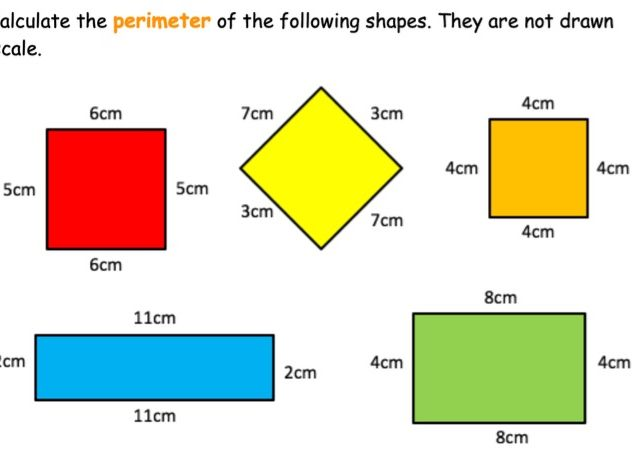 Area and Perimeter worksheet differentiated