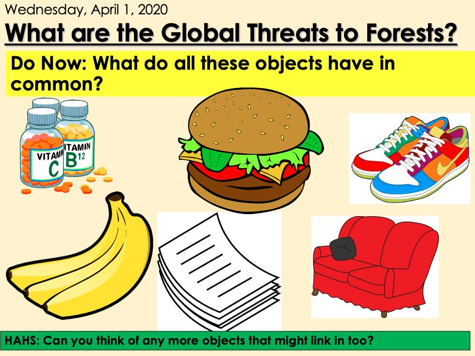 KS3 Forest Under Threat (Edexcel 9-1 B) 4- Global Threats