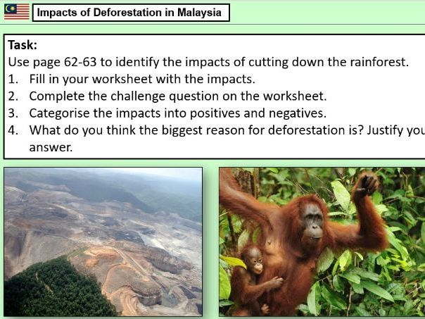 AQA Living World Tropical Rainforests SOW