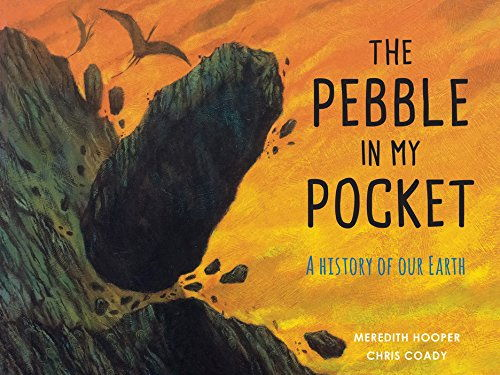 Week 2 Lesson Plans for the book Pebble in my pocket