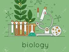 AQA Biology B5 - Hormones BUNDLE