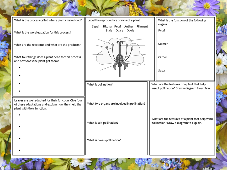 Miss johnsons shop teaching resources tes ks3 photosynthesis and plant reproduction revision mat ccuart Image collections