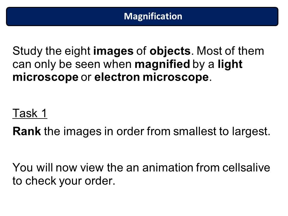 New AQA Biology Chapter 1 Cell Structure and Support Lesson 1: The world of the microscope