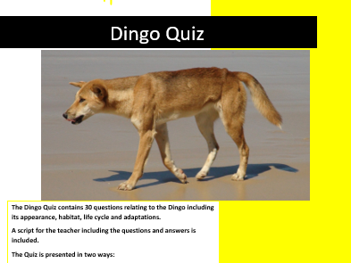 Science: Living things and their Habitats: Dingo Quiz