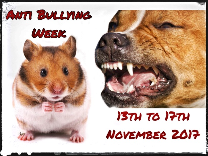 Anti Bullying week 2017. Schemes of Work, Questionnaires and Supporting Images