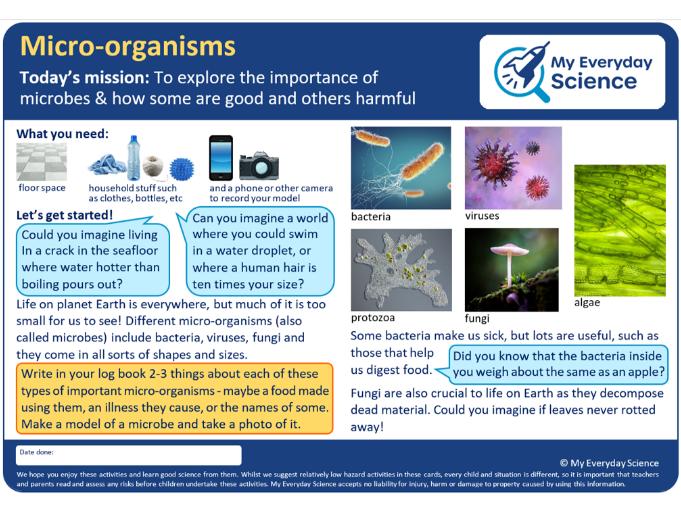 Y6 Living things & Habitats My Everyday Science