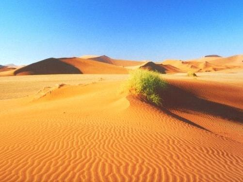 Hot Desert Systems and Landscapes (A Level AQA Geography)