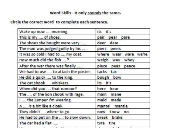 Years 7 and 9 Naplan English Practice - Word Skills - Homophones
