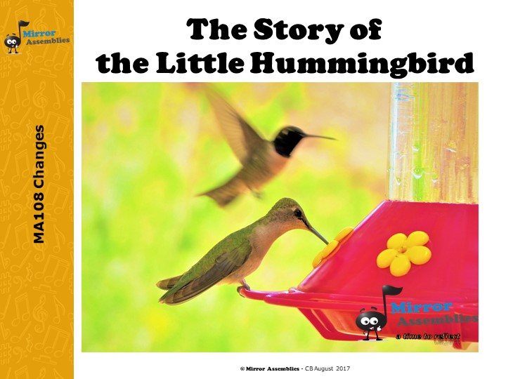 The Little Hummingbird - Changes