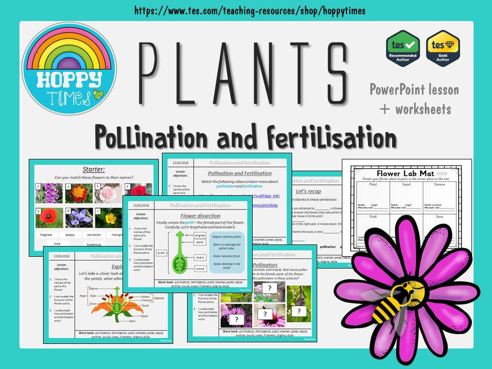 Parts of a Flower. Pollination and Fertilisation Lesson