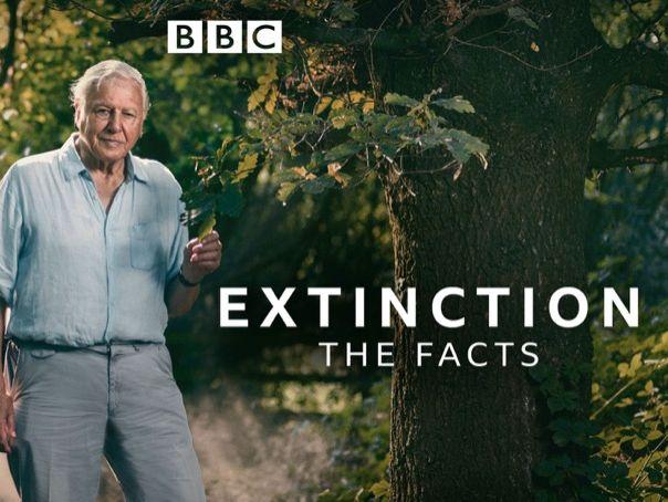 "David Attenborough ""Extinction: The Facts"" Worksheet"