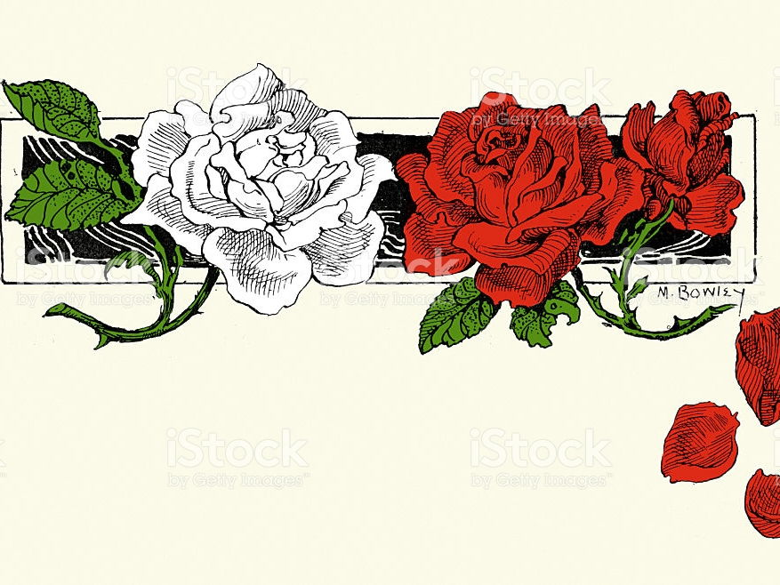 the war of the roses history essay An essay or paper on the war of the roses the wars of the roses was a series of dynastic civil wars in england fought by the rival houses of lancaster and york between 1455 and 1485.