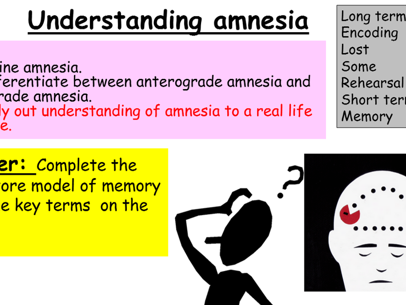 GCSE Edexcel Psychology (9-1): Topic 2, Lesson 4: Understanding amnesia