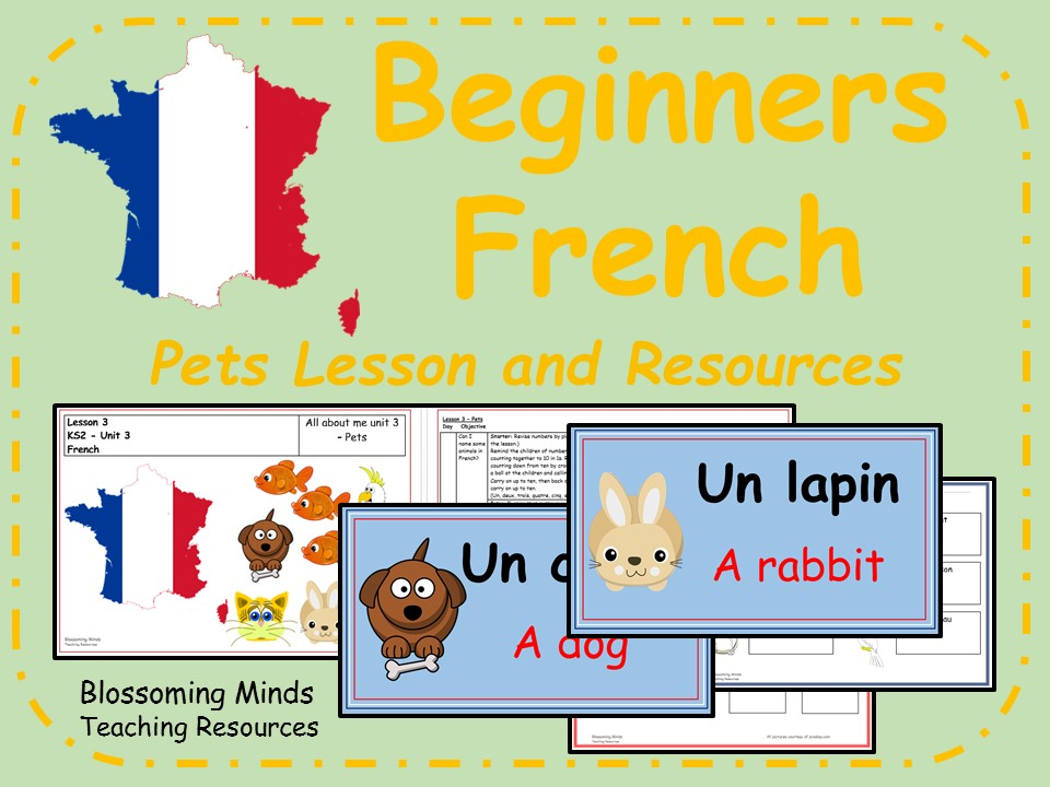 French lesson and resources - KS2 - Pets