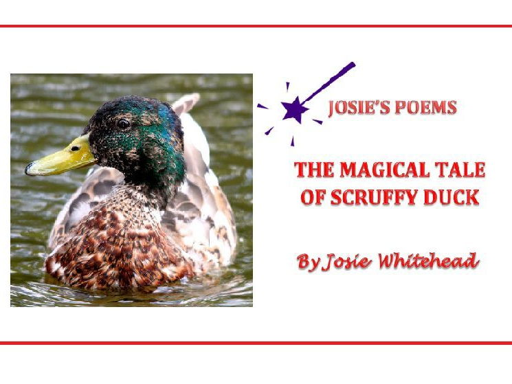 The Magical Tale of Scruffy Duck  - Poem for KS1 AND KS2 - By Josie Whitehead