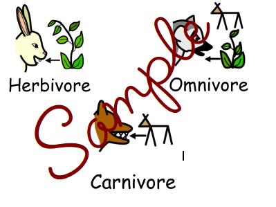 Carnivore, Herbivore, Omnivore sorting
