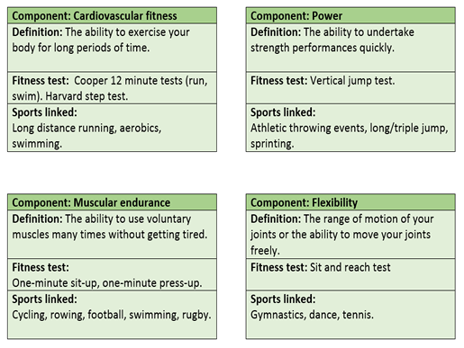 GCSE PE Edexcel 9-1 Components of fitness revision flash cards