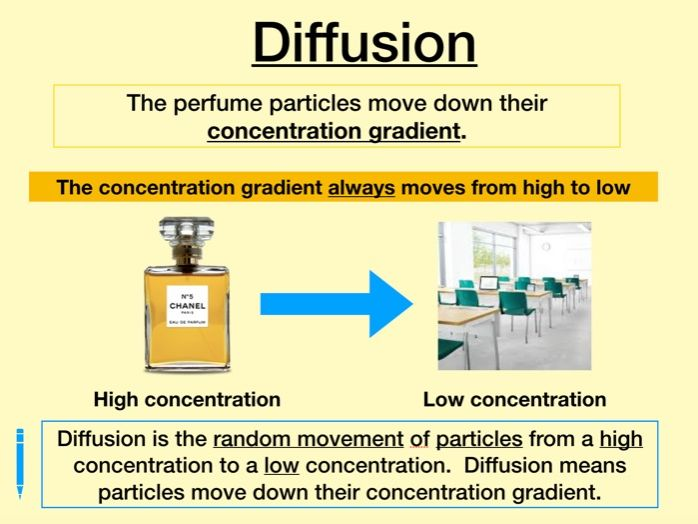 Diffusion and factors affecting rate
