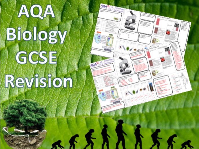 4.1 Cell Structure - NEW AQA Trilogy (Biology) Revision with Answers