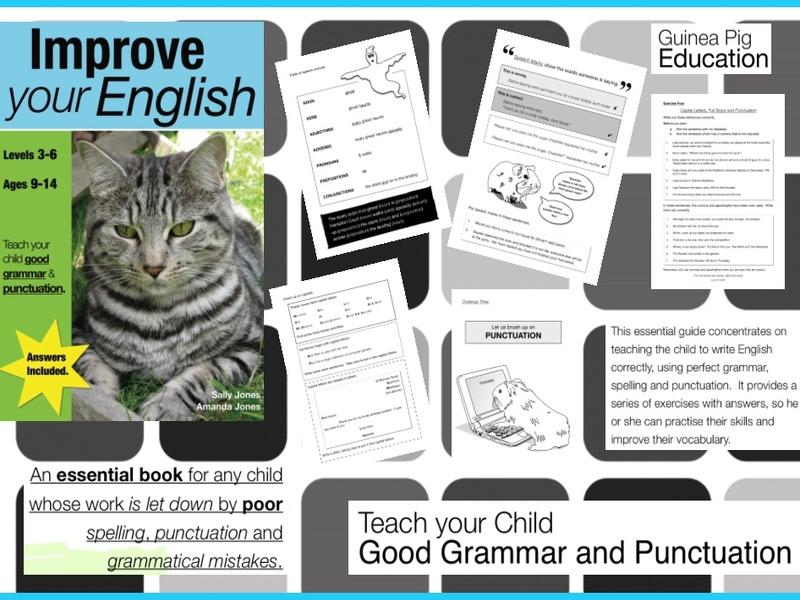 Grammar Book For Cat