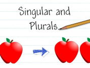 Plural forms of nouns and numerals in French