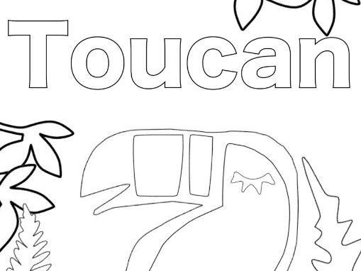 Toucan colouring