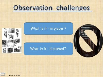 Observation challenge: what is it?