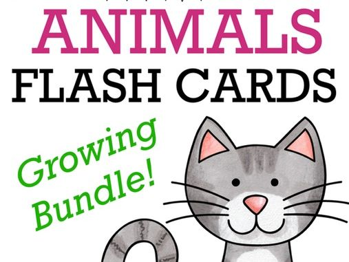 Animals flash cards - growing bundle with more than 90 picture cards, zoo, wild, English / ESL