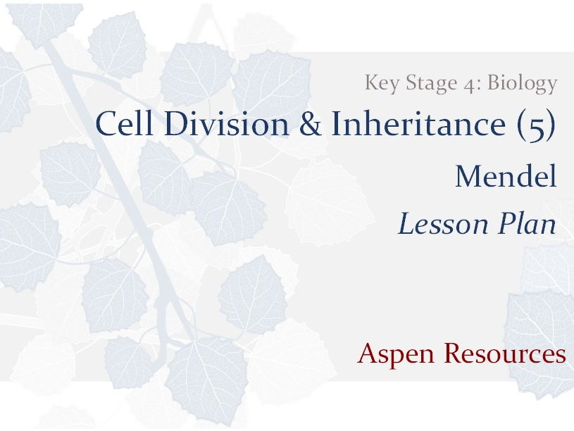 Mendel  ¦  Key Stage 4  ¦  Biology  ¦  Cell Division & Inheritance (5)  ¦  Lesson Plan