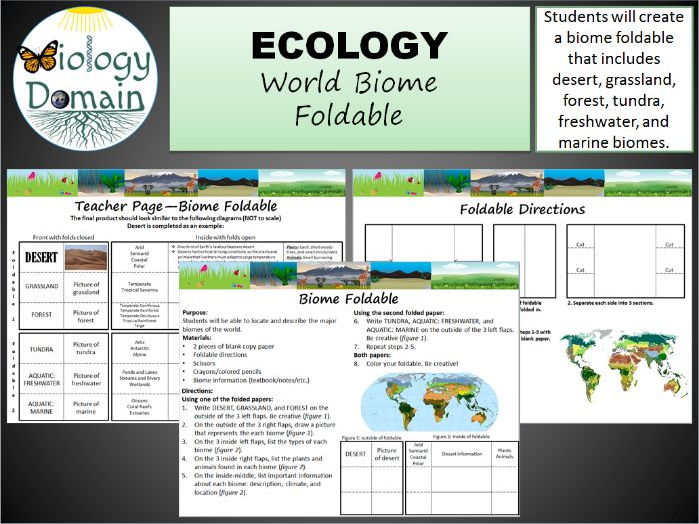 world biomes foldable by biologydomain