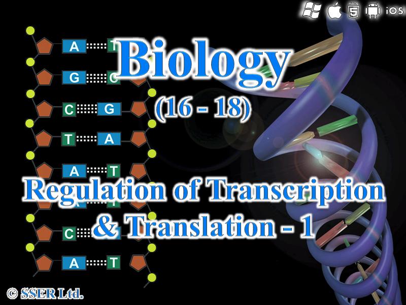 3.8.2.2 Regulation of Transcription & Translation - 1