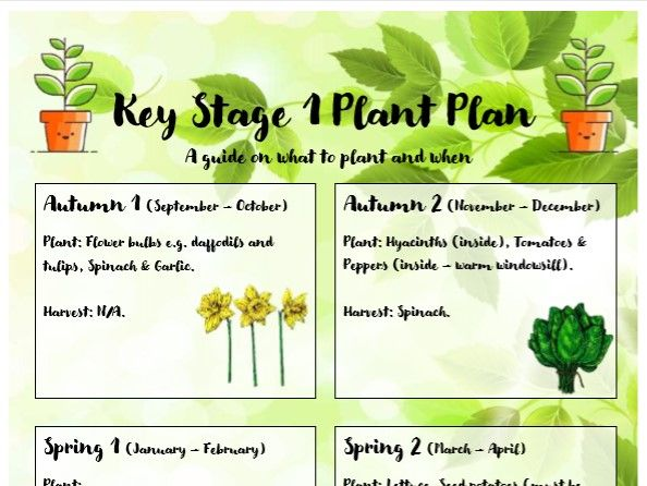 KS1 Planting Plan