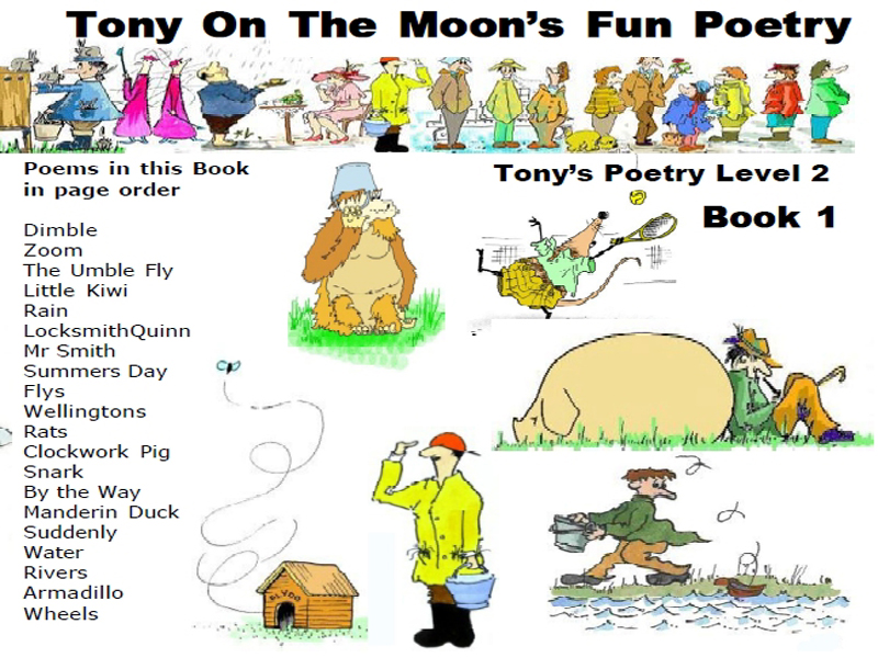Children's Illustrated Poetry Book - Level 2 book 1