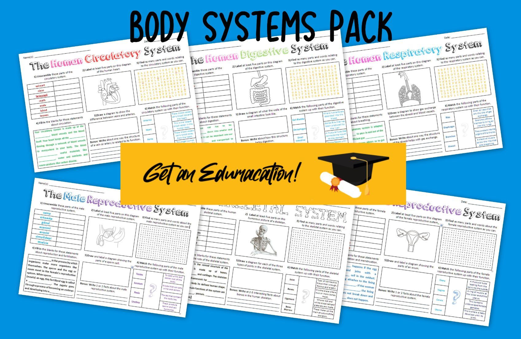 Body Systems Pack
