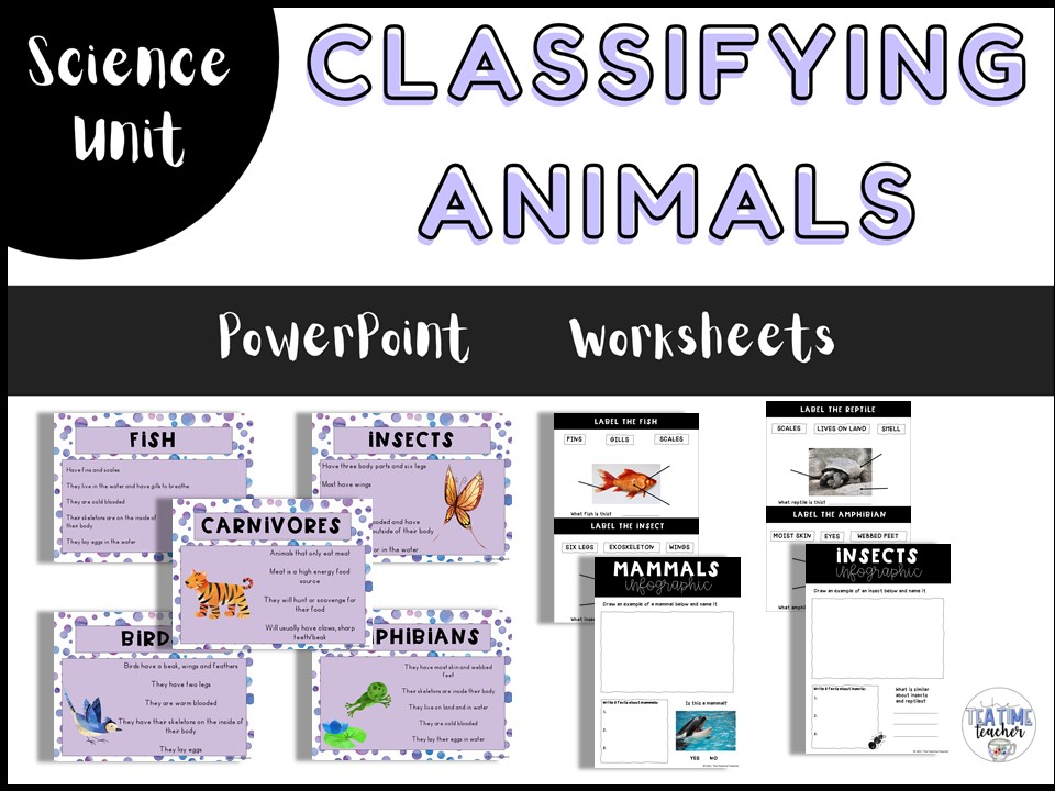 Animals including Humans Classifying Animals Year 1