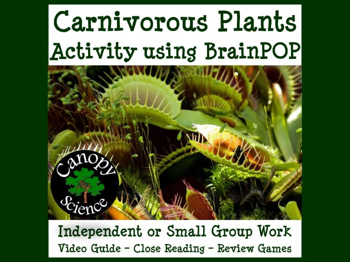 Carnivorous Plants Activity using BrainPOP