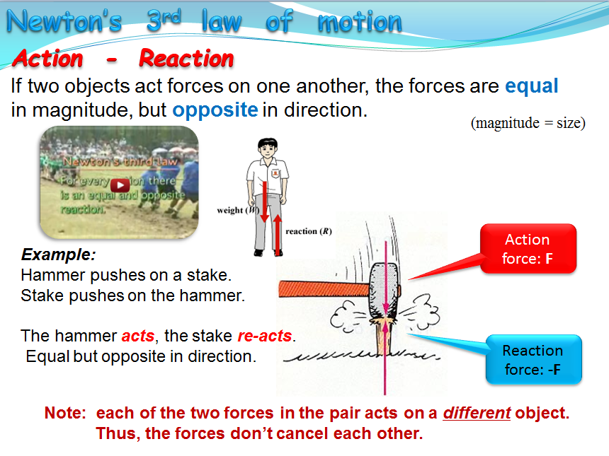 Newton's third law of motion - Action-Reaction (Physics)