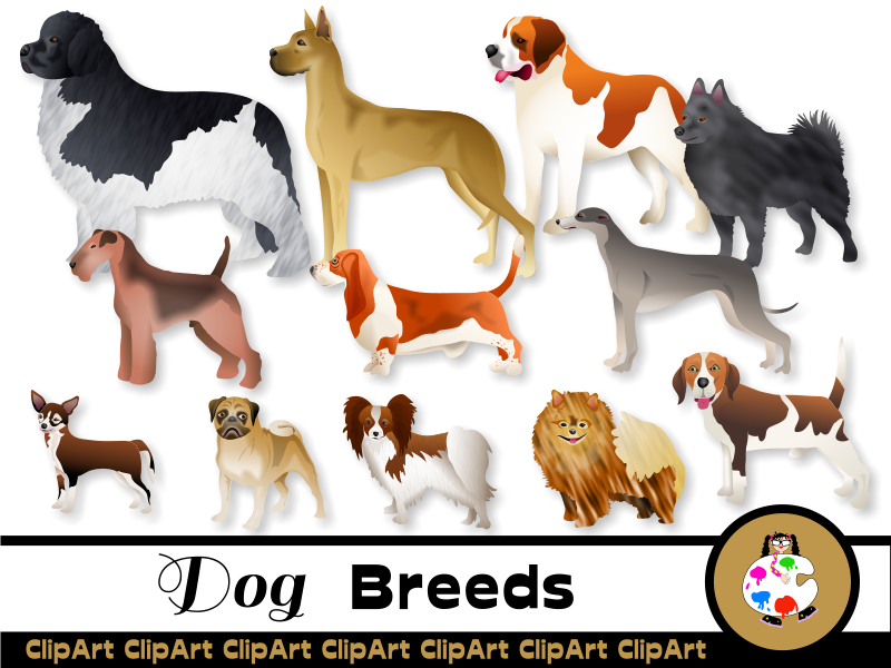 Pedigree Dog Clip Art