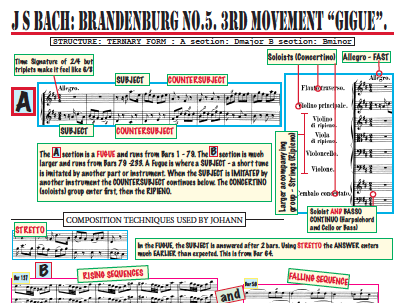 Bach Brandenburg Facts and Activity