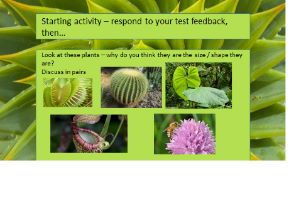 Plant adaptations GCSE biology low-mid ability