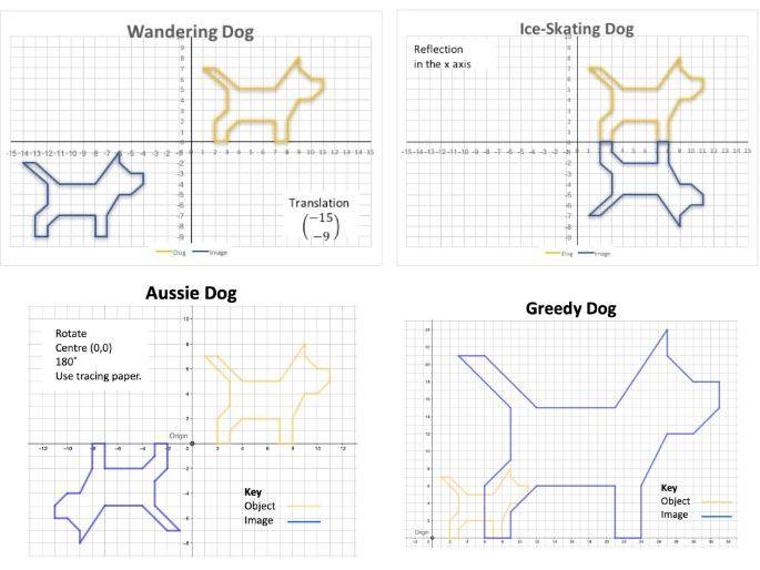 Dog Transformations GCSE