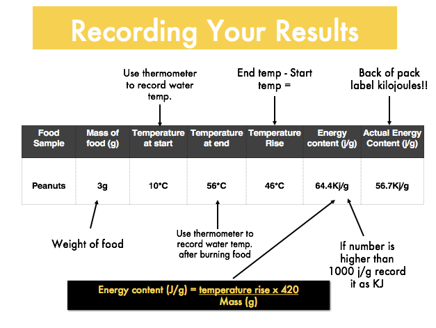 Energy content of food - Energy balance
