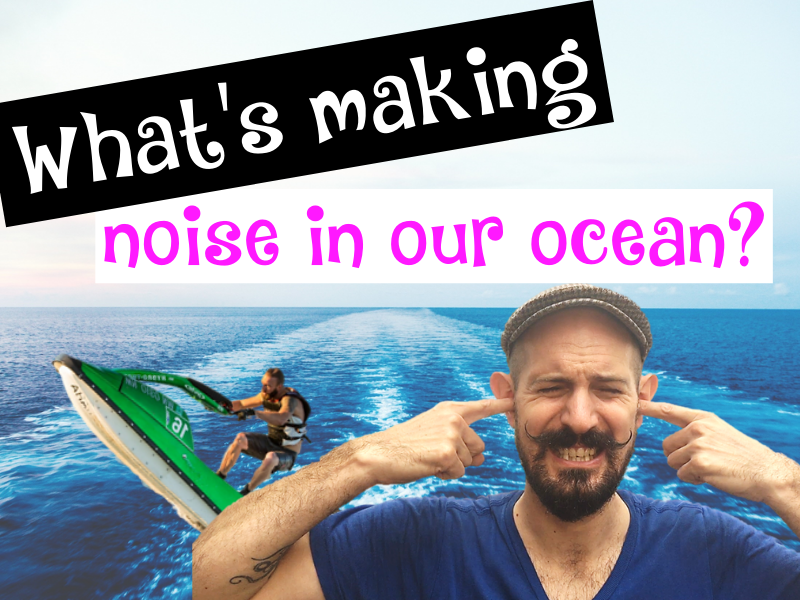 15 Sounds Making Our Ocean Noisy!