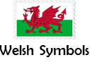 Comprehension - All things Welsh!